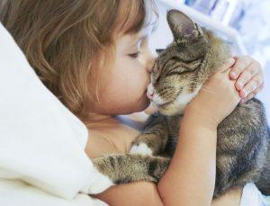 la cohabitation entre un chat et des enfants